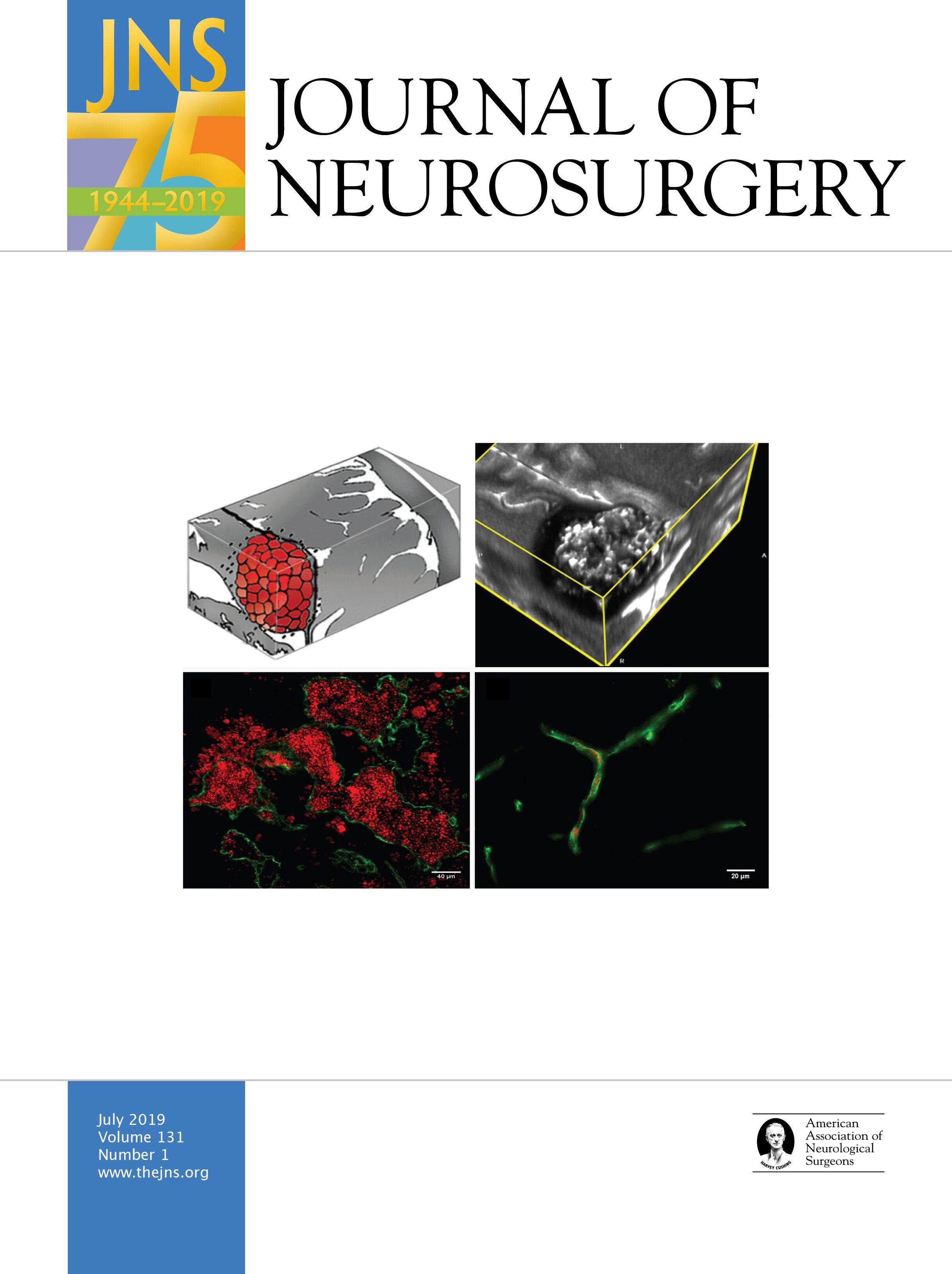 2019 Aans Annual Scientific Meeting In Journal Of Neurosurgery