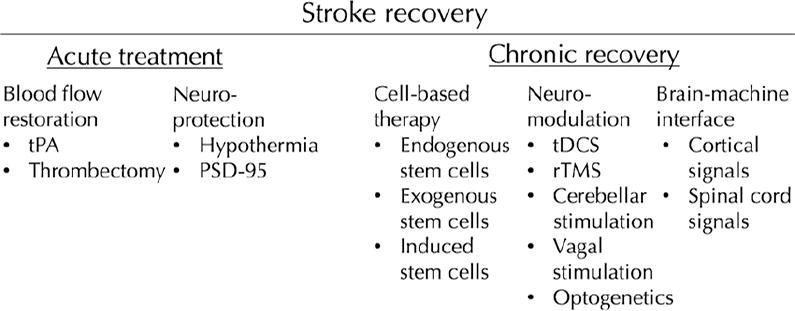 Neurorestoration after stroke in: Neurosurgical Focus Volume 40