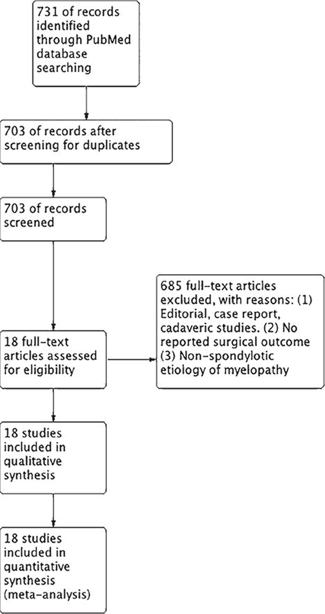 Surgical outcomes of elderly patients with cervical spondylotic