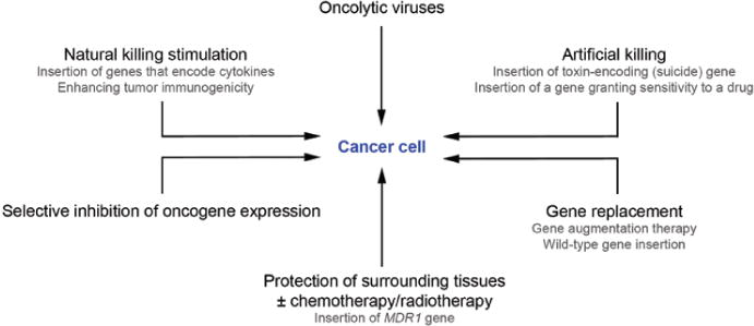Current standing and frontiers of gene therapy for meningiomas in