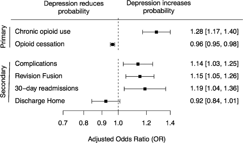 Preoperative depression, lumbar fusion, and opioid use: an