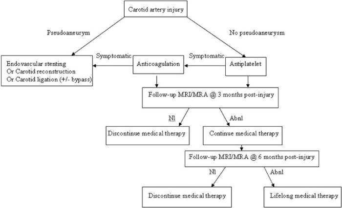 Extracranial traumatic carotid artery dissections in
