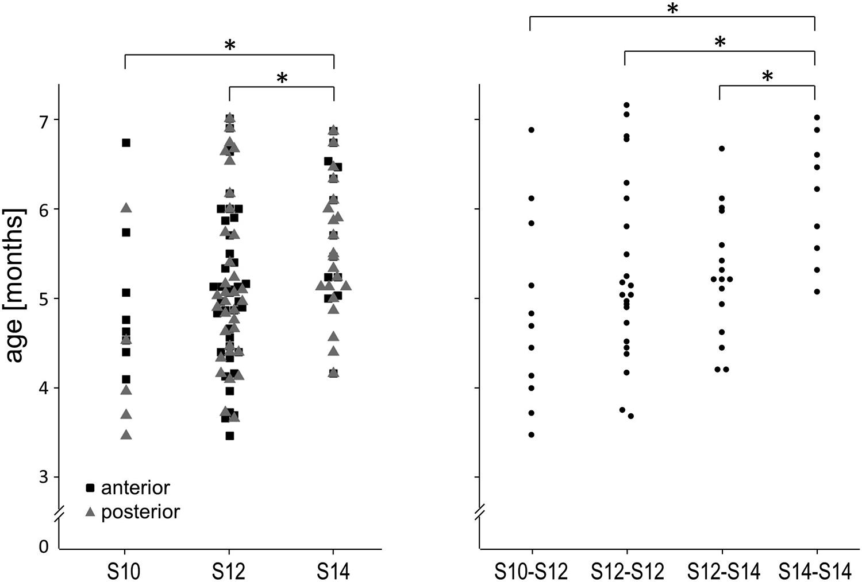 Assessment of spring cranioplasty biomechanics in sagittal
