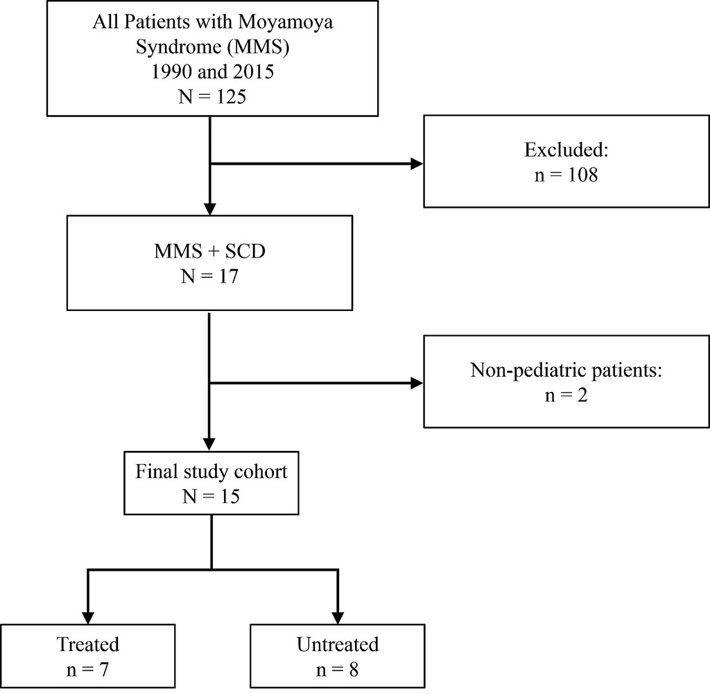 Effectiveness of surgical revascularization for stroke