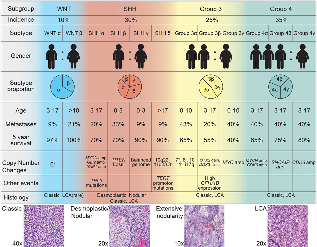 Childhood brain tumors: current management, biological insights, and