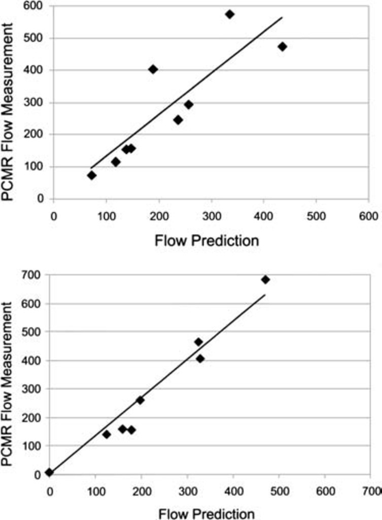 A patient-specific computer model to predict outcomes of the