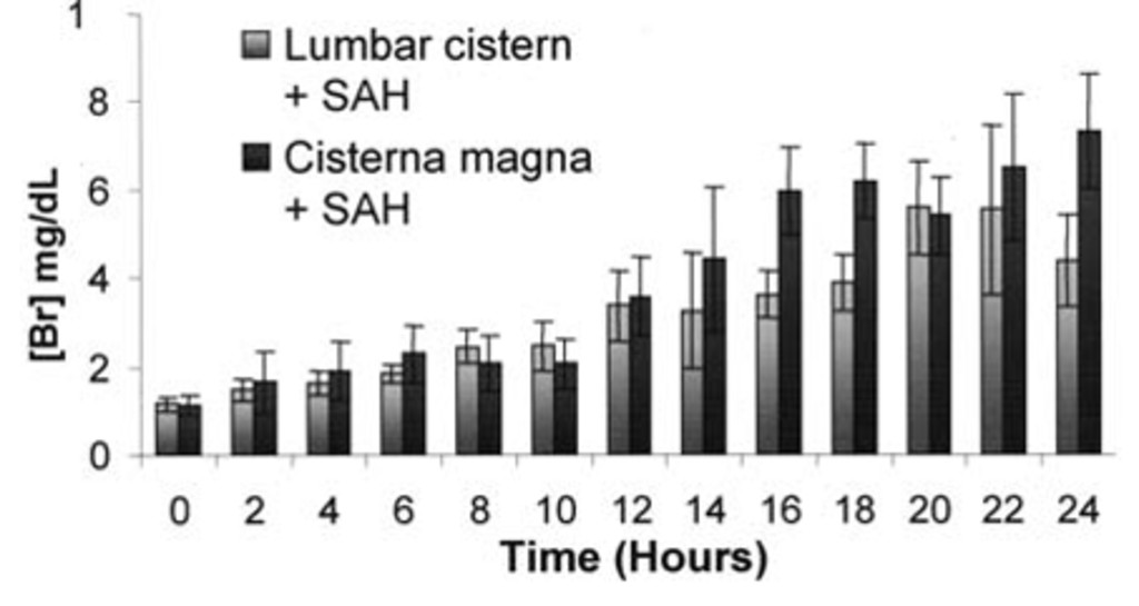 Bilirubin as a cerebrospinal fluid marker of sentinel