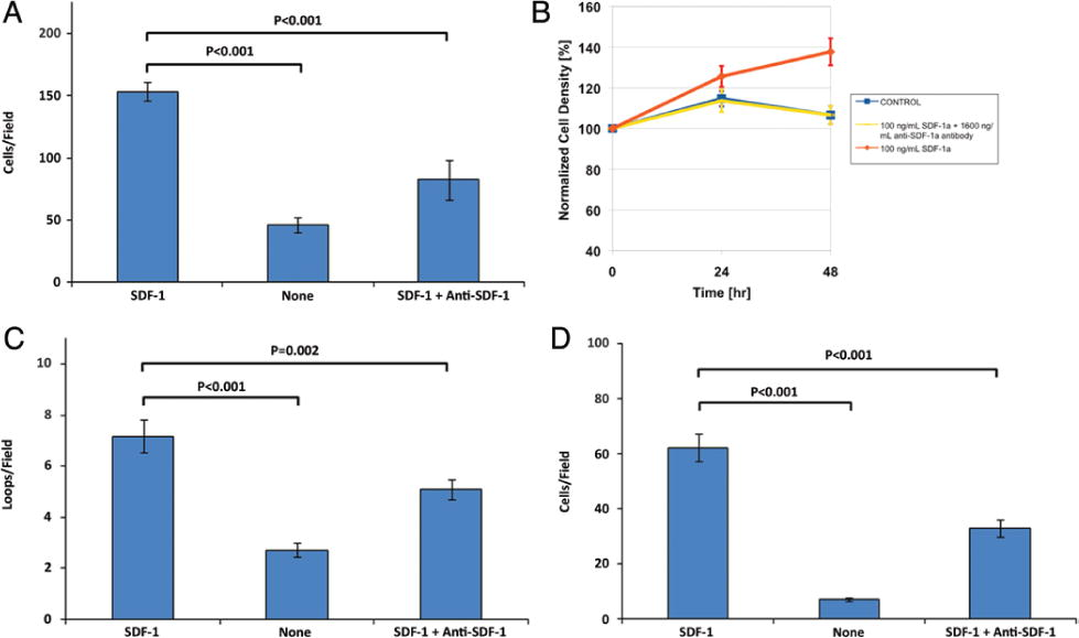 Stromal cell–derived factor-1 promoted angiogenesis and inflammatory