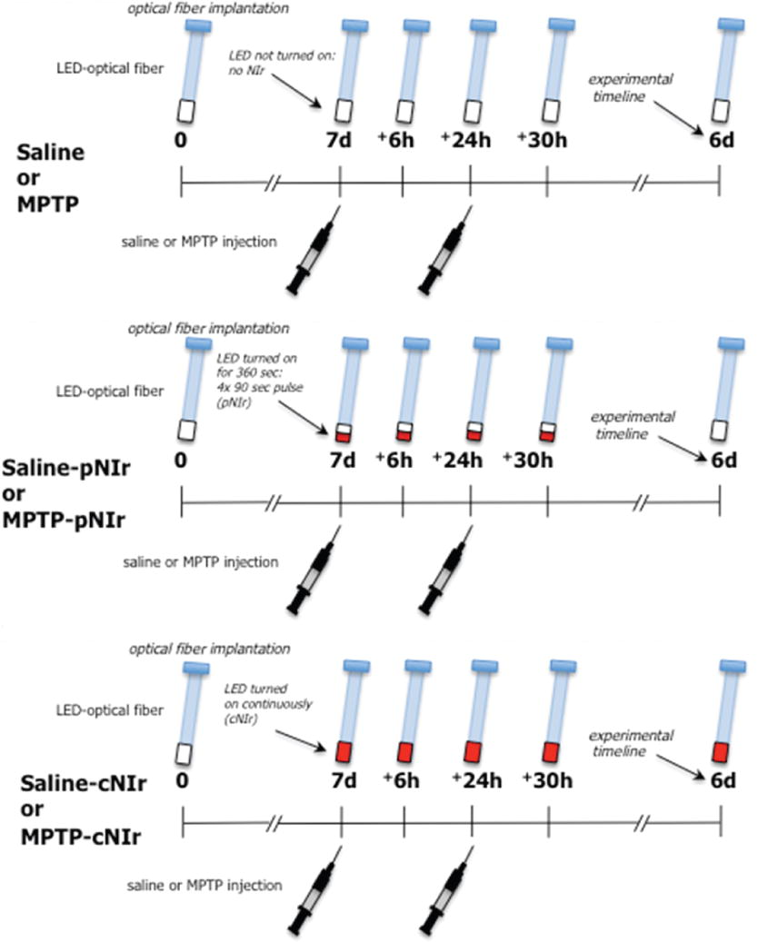 Photobiomodulation inside the brain: a novel method of