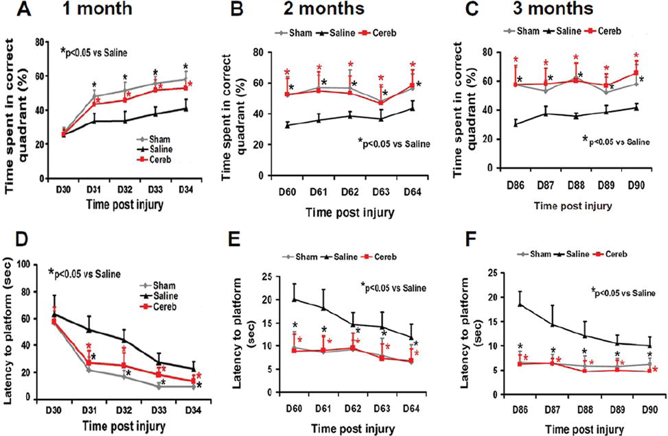 Cerebrolysin improves cognitive performance in rats after mild