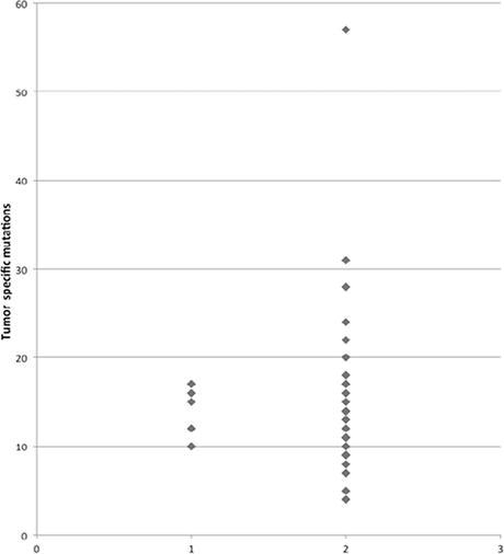 Genetic landscape of sporadic vestibular schwannoma in