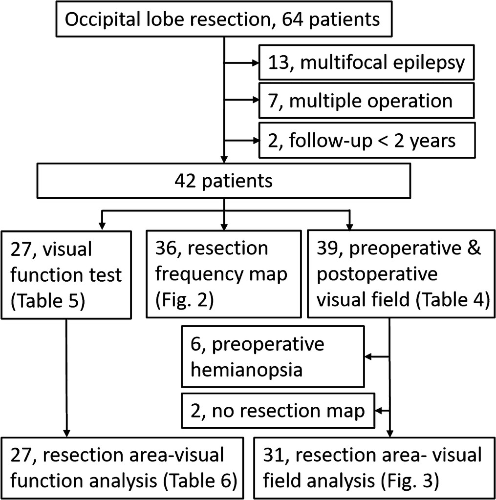 Relationship Between Cortical Resection And Visual Function After