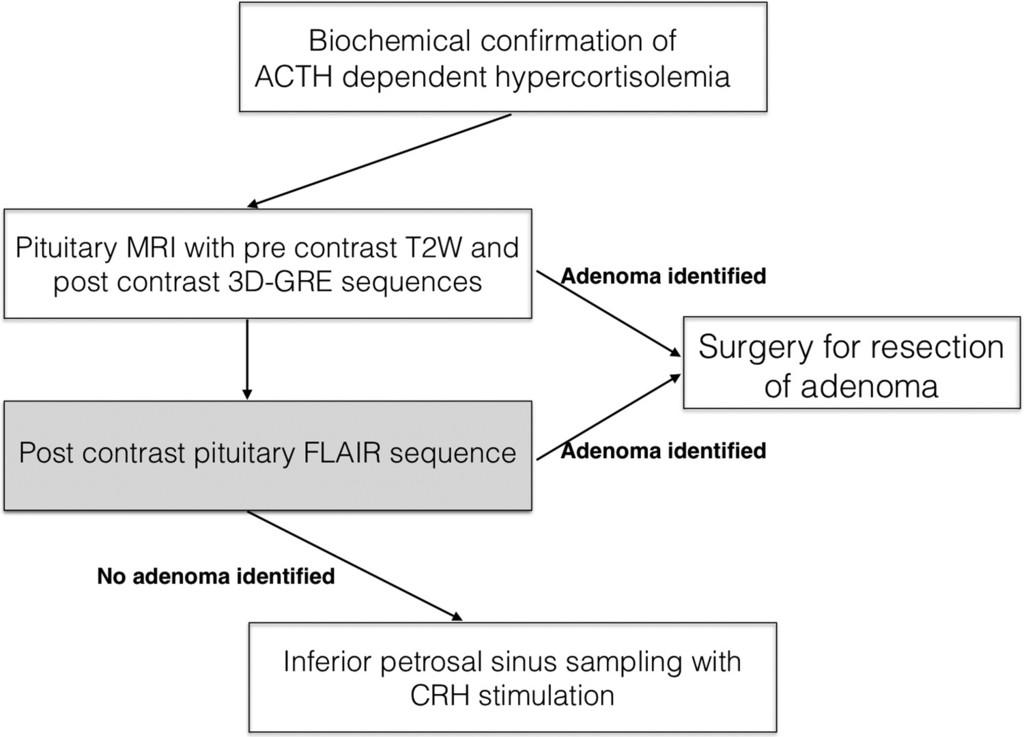 Potential utility of FLAIR in MRI-negative Cushing's disease in