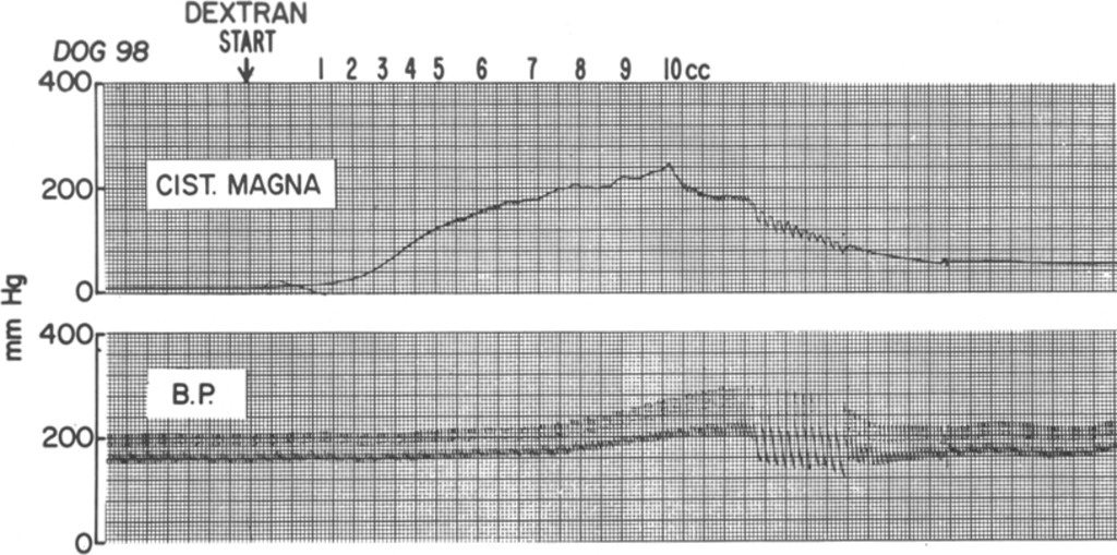 Intracranial arterial spasm in the dog in: Journal of