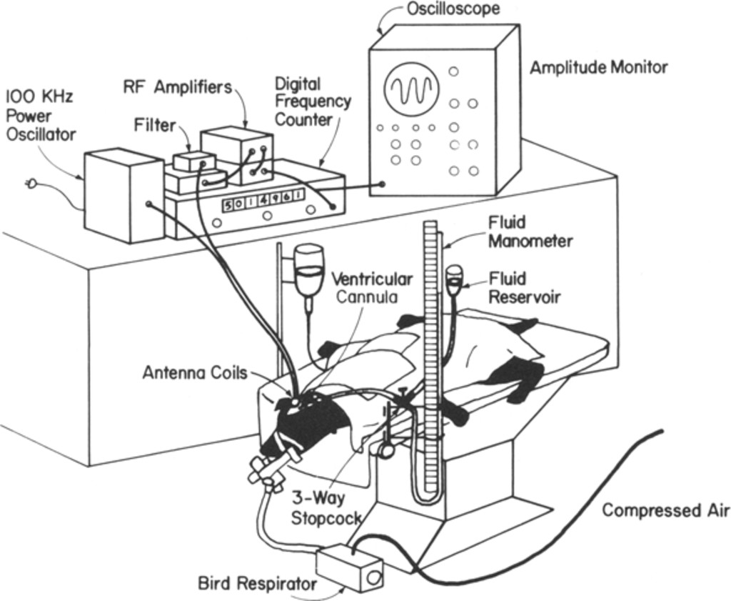 Chronic measurement of epidural pressure with an induction-powered on