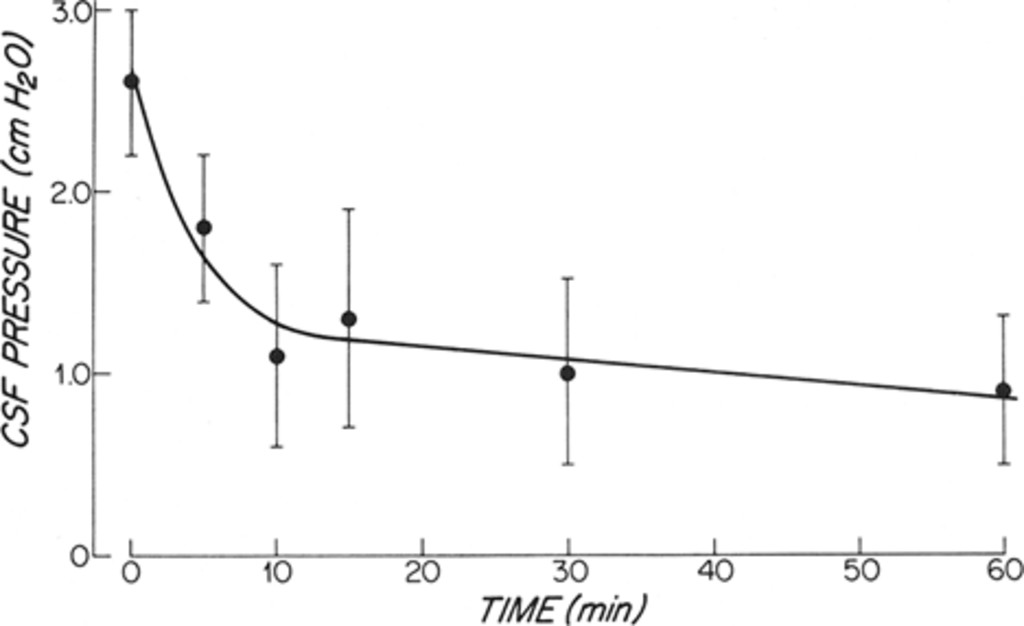 The effect of furosemide on intracranial pressure and hemorrhage in ...