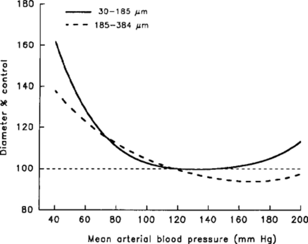Blood pressure and intracranial pressure-volume dynamics in