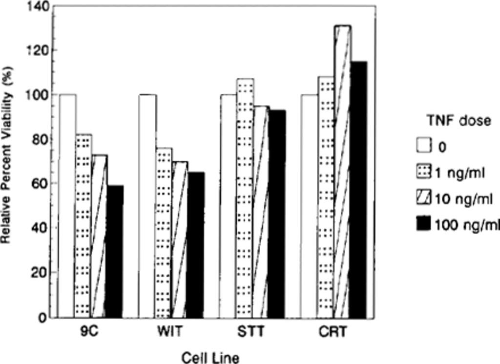 Effect of recombinant tumor necrosis factor-α on three