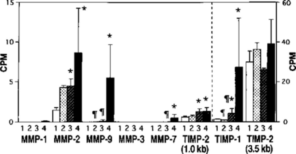 Bar Graph Displaying The Mean Radioactivities Of Northern Blots Interstitial Collagenase MMP 1 Gelatinase A 2 B 9